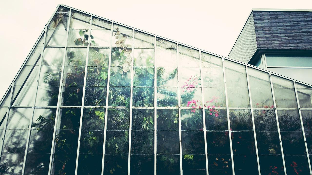 Ta hjälp av glasmästare för glas till växthus